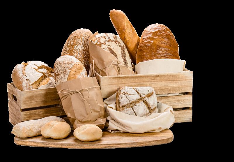 Pain aux céréales, pain complet, pain de mie, pain de seigle, baguettes, brioches