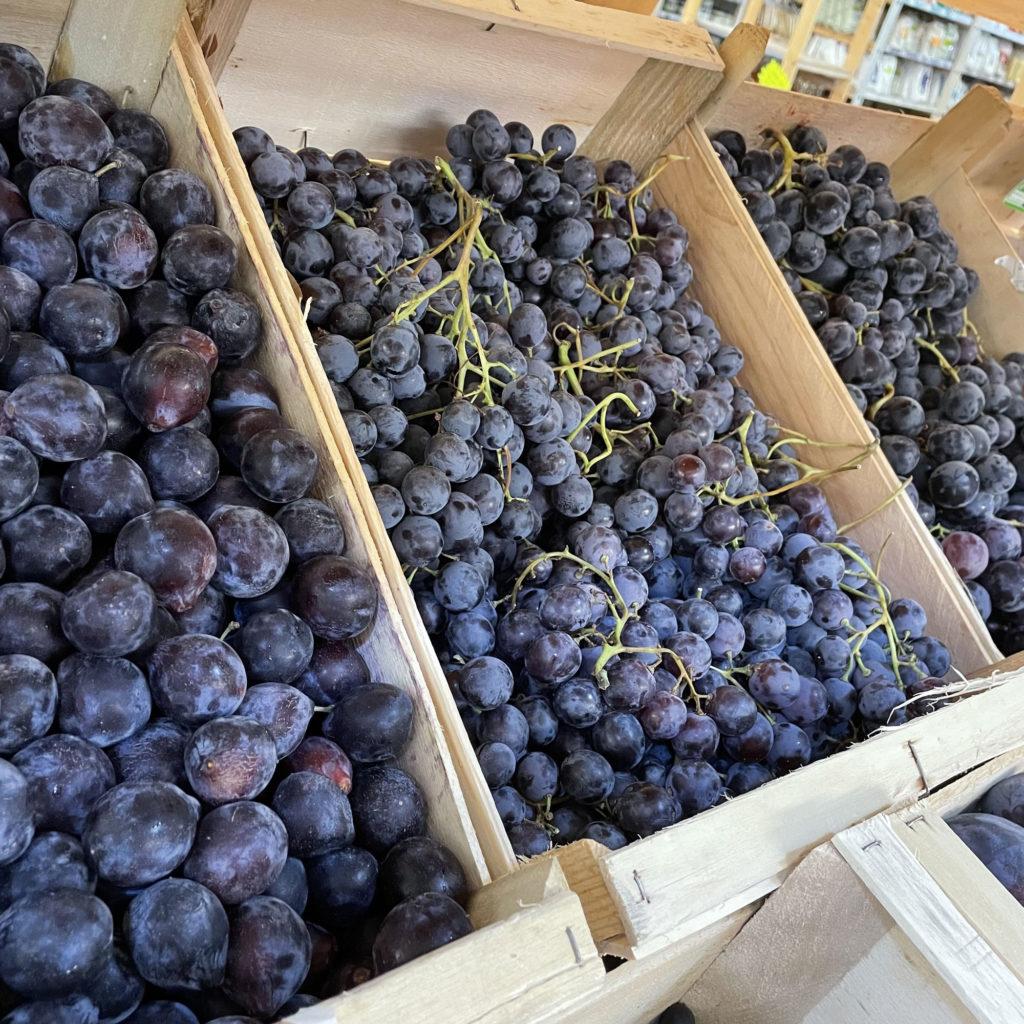 les raisins bio du Beaupré Biomonde royan